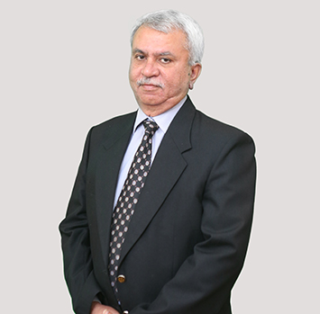 Prof. Trilochan Sastry